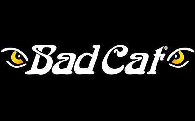 bad cat amps